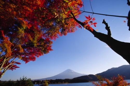 Fuji22jpg24