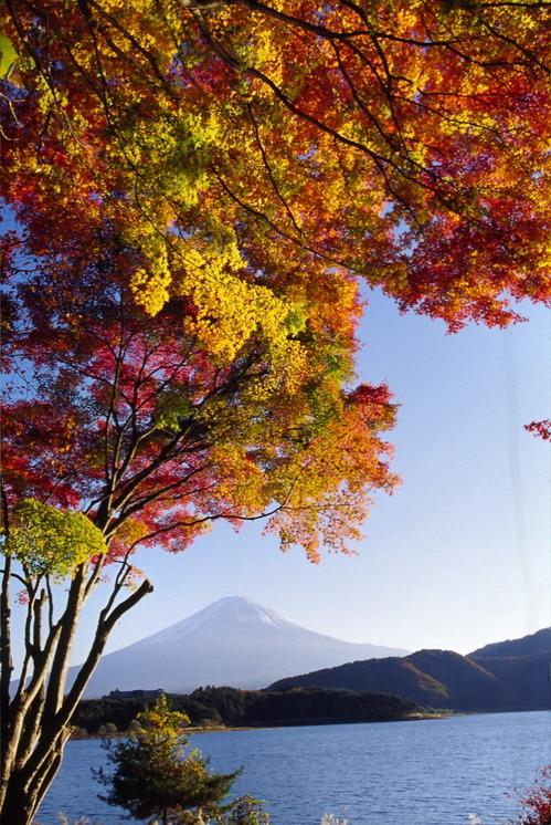 Fuji29_2
