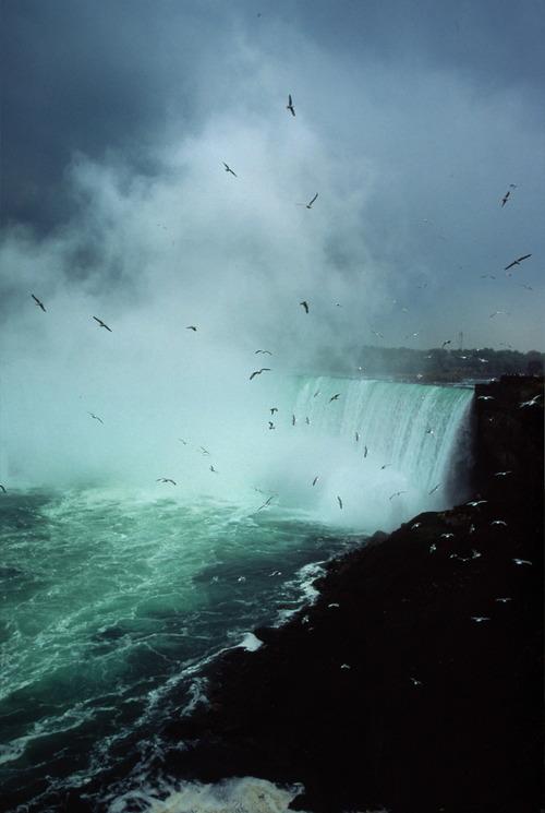 Niagara_9